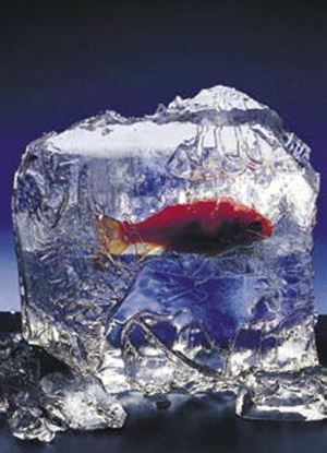 Obrázek Trikové efekty - ICEBERG Blok ledu